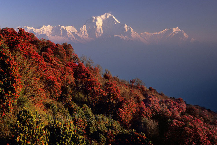 Annapurna Sanctuary Trek Fixed Departure Spring/Autumn 2018/2019