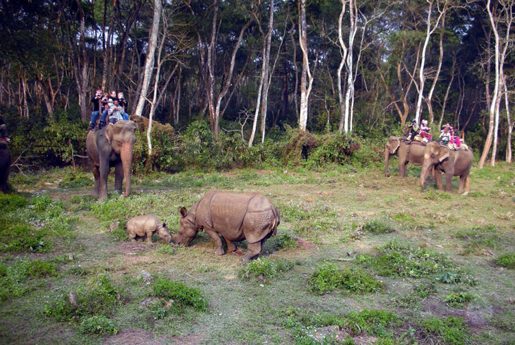 Chitwan Jungle Safari fixed departure spring/autumn 2018/2019 cost & itinerary