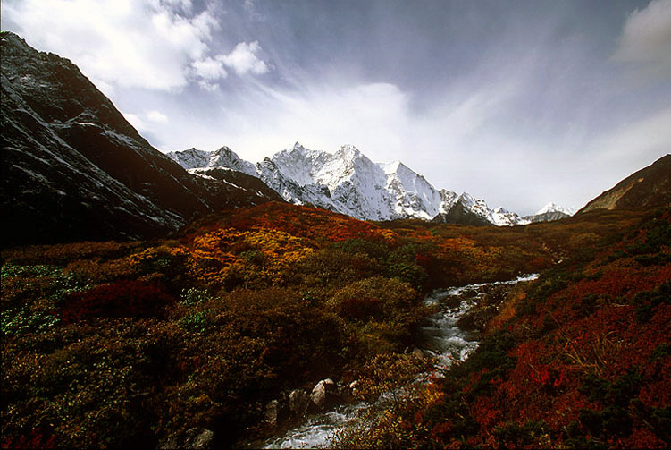 Trekking & Tours in Tibet